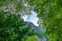 Hautes falaises et ciel nuageux par les branches vertes photographie stock libre de droits