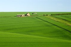 Hautes plaines est de Yorkshire Photo libre de droits