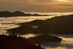 Hautes-Vosges, moutains, France. View of Hautes-Vosges, France, sunrise on the forest and clouds royalty free stock photos