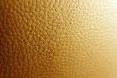 Hautmakro lizenzfreie stockfotos