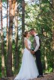 Hauts arbres et baiser des ménages mariés Photographie stock libre de droits