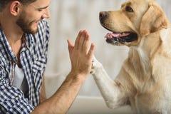 Hauts cinq avec le chien et l'humain photo stock