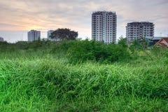 Hauts herbe et bâtiments HDR Photos stock