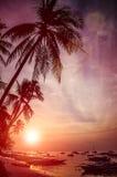 Hauts palmiers sur le coucher du soleil sur la plage avec la silhouette des bateaux de banca à l'île de Panglao, Bohol, Philippin Image stock