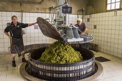 Hautvillers отжимая виноградины Шампань Стоковое фото RF