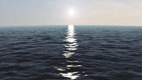 hav stock video