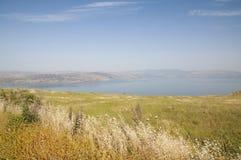 Hav av Galilee och Golanen Fotografering för Bildbyråer