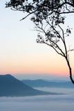 Hav av mist och solnedgången på berget Royaltyfri Bild