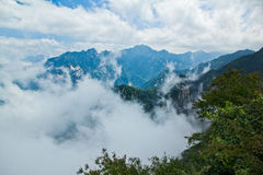Hav av moln Arkivbild