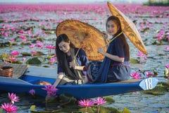 Hav av röd lotusblomma Royaltyfri Foto