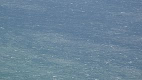 Hav- eller havsvatten stock video