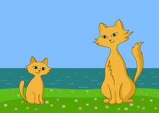 hav för kattkustkattunge Royaltyfri Illustrationer