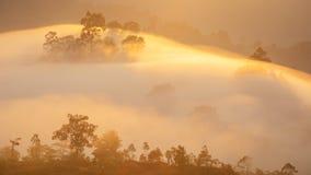 Hav för punkt för Krungshing dimmasikt av dimma Royaltyfri Bild