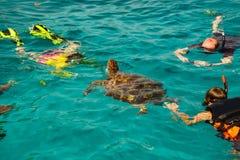 Hav för strand för Similan sköldpaddaöar Royaltyfri Fotografi