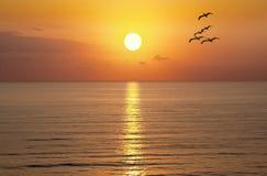 Hav för soluppgångsolnedgångsol Arkivbild