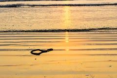 Hav guld- strandsolnedgångbakgrund Fotografering för Bildbyråer
