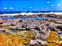 Hav i Cancun, Mexico Arkivfoto