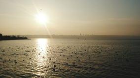 Hav med solnedgång Royaltyfria Foton