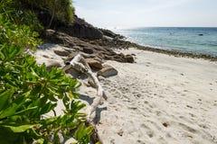 Hav och djungeln på den Tarutao medborgaren Marine Park som är sydlig av t Royaltyfria Bilder