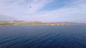 Hav och Seagull lager videofilmer