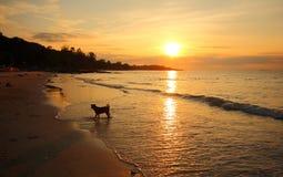 Hav och strand i KohSamet Rayong Thailand Arkivfoto