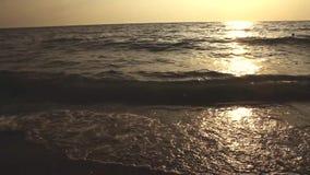 Hav på solnedgången lager videofilmer