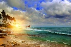 Hav, soluppgång och tropiska palmträd på kusten arkivbilder
