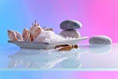 Hav som är salt med stenar och skal Arkivbilder