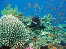 hav under Royaltyfri Fotografi