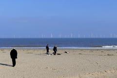 Hav Windfarm fotografering för bildbyråer