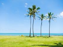 Havaí Foto de Stock