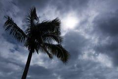 Havaí Lava Molten Volcano Beaches e oceano Fotografia de Stock