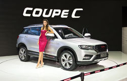 Haval Coupe C Obrazy Royalty Free