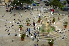 HAVANA - 29 GELEDEN 2008. Het plein van San Francis od Assisi. Stock Afbeeldingen