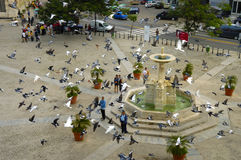 HAVANA - 29 HÁ 2008. Plaza de San Francis od Assisi. Imagens de Stock