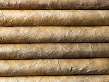 Havana cigars background Royalty Free Stock Photos