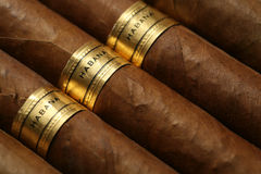 Havana Cigars Texture Stock Photos