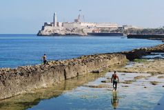 Havana Cuba Stock Fotografie