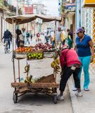 A typical view in Havana in Cuba royalty free stock photos