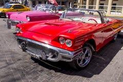 Havana, Cuba Kleurrijke klassieke jaren '50auto's stock afbeelding