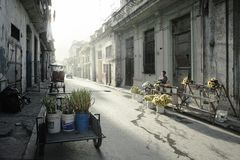 Havana Cubu at dawn. Typical residential street in Centro with p stock image