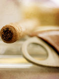 Havana vintage cigar. Vintage textured macro details of luxury havana cigar Stock Images