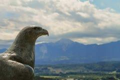 Havande uppsikt över by för hök fotografering för bildbyråer