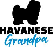 Havanese Grandpa. Silhouette blue word royalty free illustration