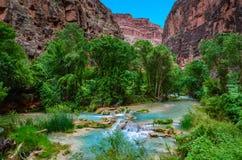 Havasu Creek - Hualapai Tribal Lands - Arizona Royalty Free Stock Photography