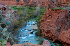 Havasu Creek in Supai,  Arizona. The beautiful blue-green waters of Havasu Creek run through the Havasupai Reservation  to form the beautful and famous Royalty Free Stock Photo