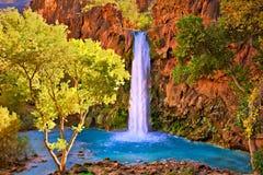 Havasu Falls. Fall at Havasu Falls, in Arizona stock photo