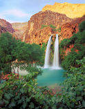 Havasue Falls. A waterfall & oasis in the desert Royalty Free Stock Images