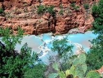 Havasupai spadki, baseny, błękitne wody, geological formaci skały ściany Obraz Royalty Free