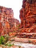 Havasupai spadki, baseny, błękitne wody, geological formaci skały ściany Zdjęcia Stock